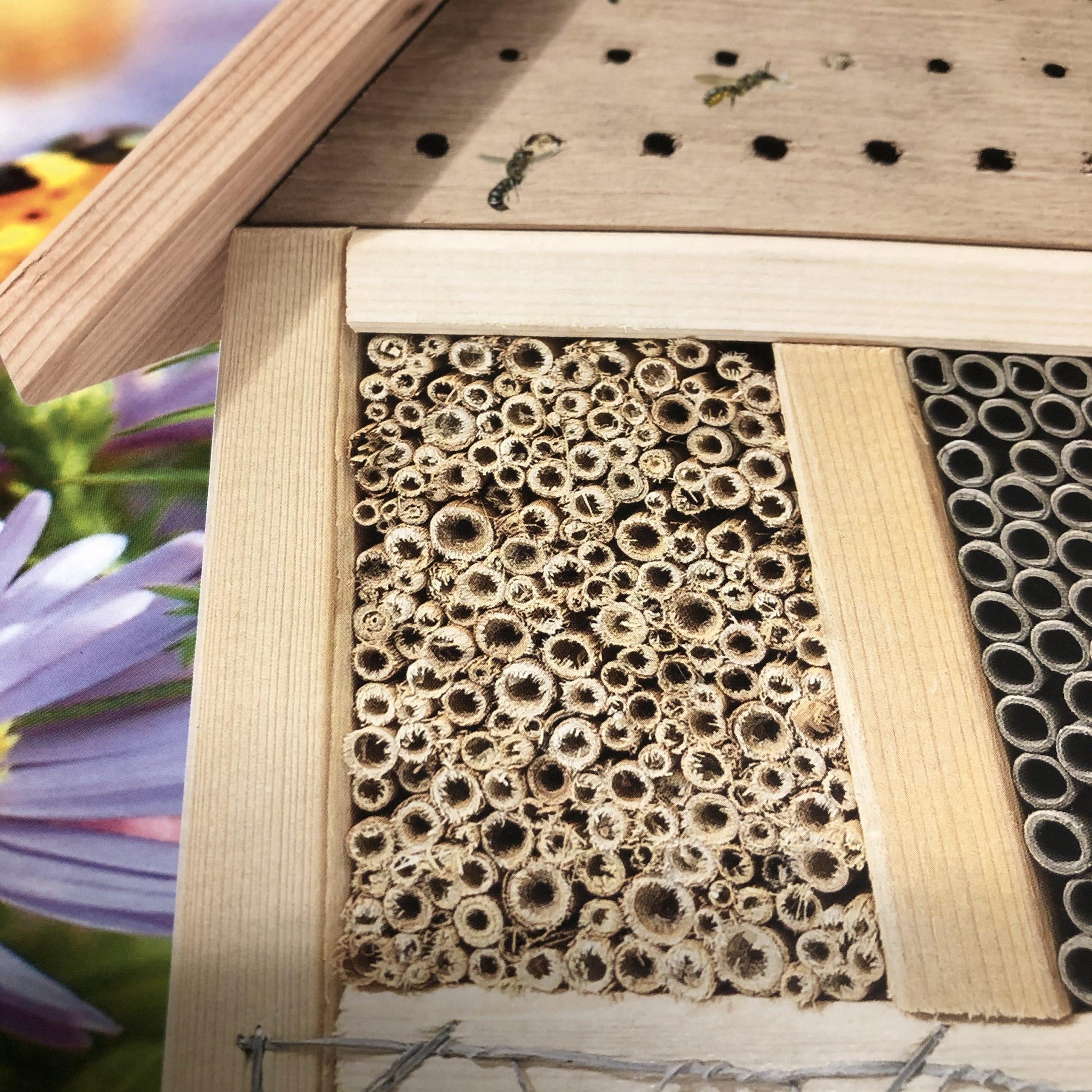 Produktbild eines Insektenhotels.